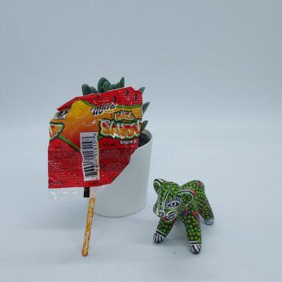 Candy Mara - Sandia Chile